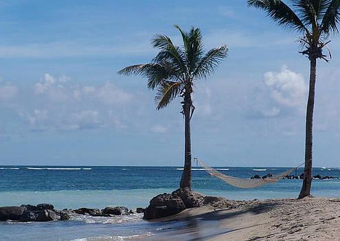 Beach Hammock by Sharon Theron