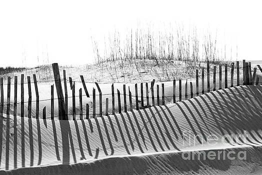 Beach sand dune by Cheryl Casey