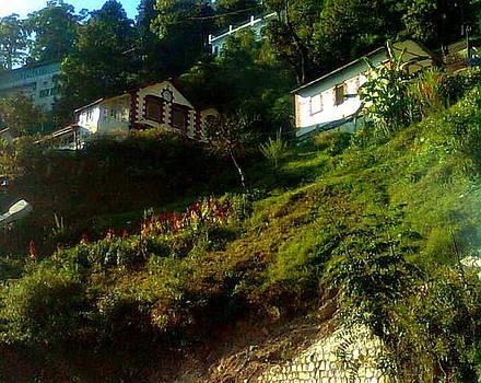 Beautiful Cottage by Salman Ravish