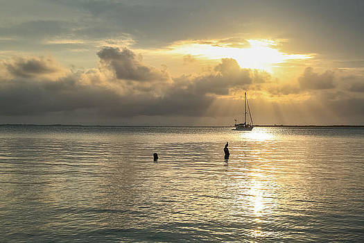 Beautiful Sunset by Tyler Olson