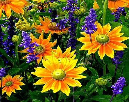 Beautiful Yellow by Yaa Hughes