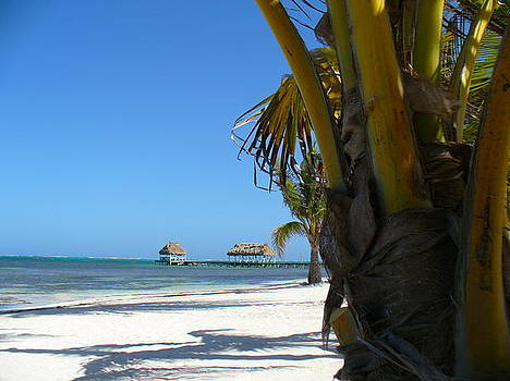 Belize  by Sonia S