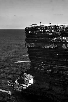 Beware of falling photographers by Tony Reddington