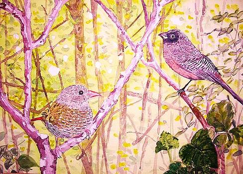 Bird Pair by Linda Vaughon