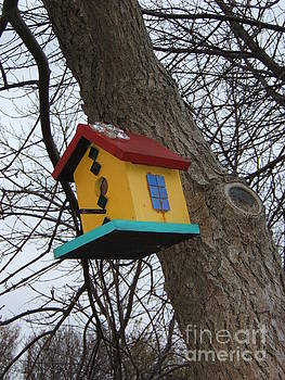 Birdhouse of Color by Margaret McDermott