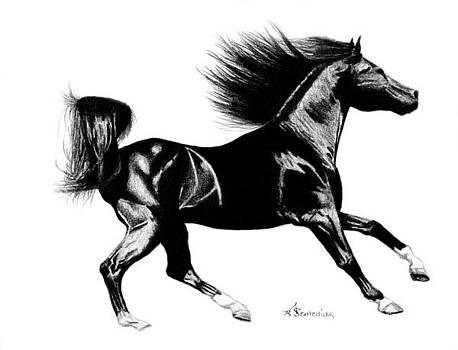 Black Speed by Kayleigh Semeniuk