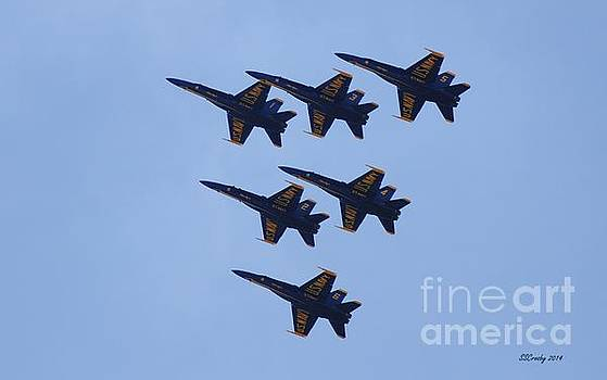 Blue Angel Squadron by Susan Stevens Crosby