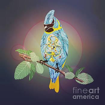 Blue Bird by Disko Galerie