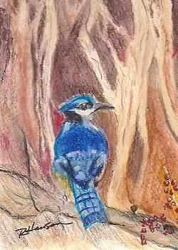 Bluejay by Ruthann  Hanson