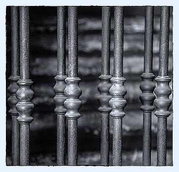 Bologna Bars by Craig Brown