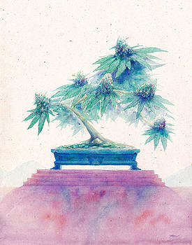 Bonsai Cannabis Two by Raymond L Warfield jr