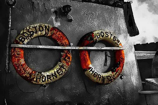 Boston Hornet by Tony Reddington