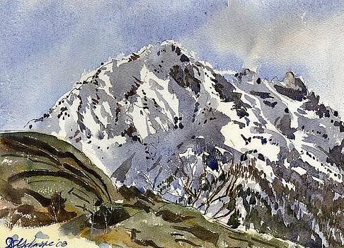 Bristenstock Mtn by David Gilmore