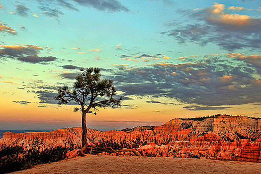 Bryce Canyon by Leslie Kirk