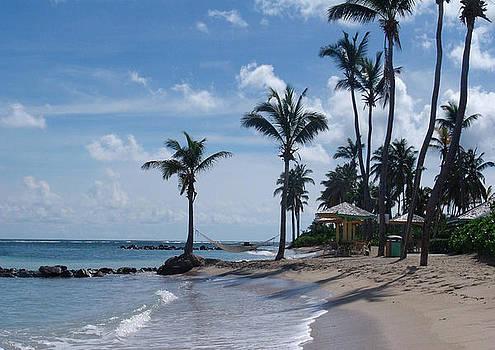 Caribbean beach by Sharon Theron