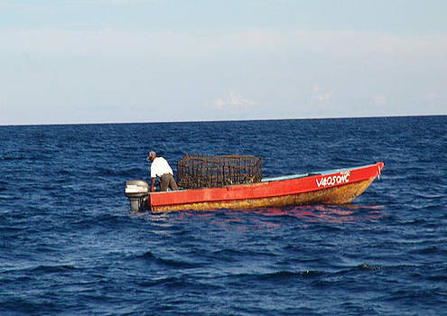 Caribbean fisherman by Sharon Theron