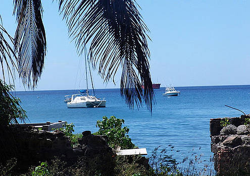 Caribbean View by Sharon Theron