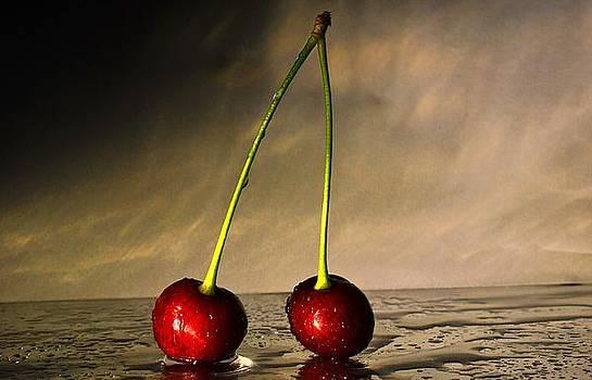 Cherrys by Timo Daniel