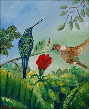 Colibris by Jean Pierre Bergoeing