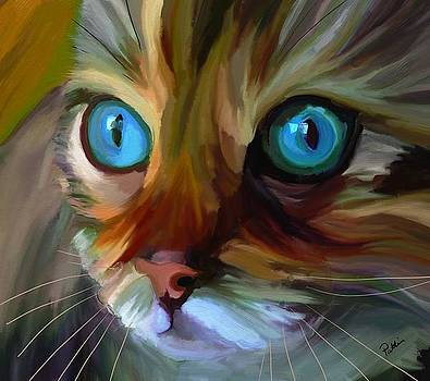 Colorful Cat by Patti Siehien