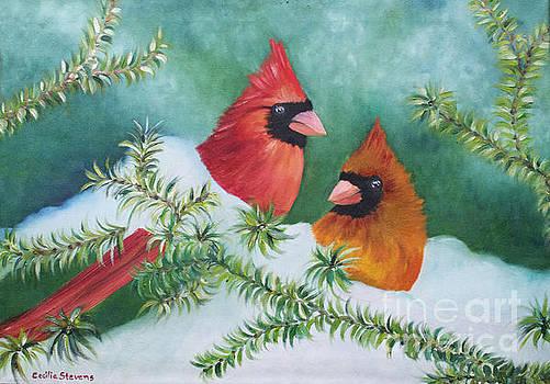 Colorful Companions by Cecilia Stevens