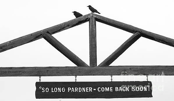 Come Back Soon by Deby Dixon