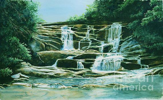 Conasauga falls by Penny Johnson
