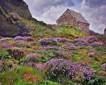 Cornish Countryside by Vicki Lea Eggen
