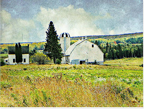 Country Farm by Dianne  Lacourciere