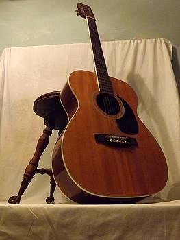 Country Guitar by Michael Sokalski