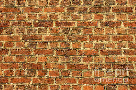 Cracked Dirty Brick Wall Background by Kiril Stanchev