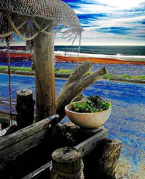 Crystal Cove Laguna Beach by David Murphy