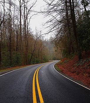 Curves Ahead by Judy  Waller