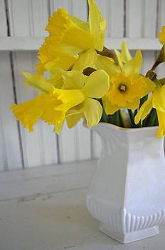 Daffodils in Ironstone by Carol Bruno