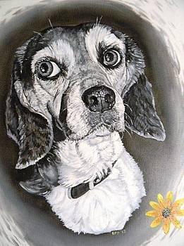 Daisy Dog by Kevin F Heuman