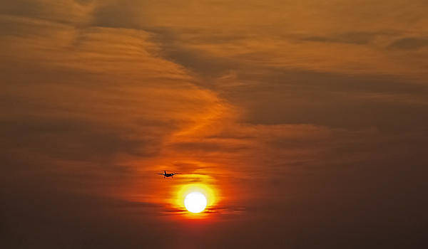Dash of Dawn by Greg Reed