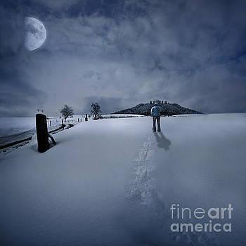 December Winter by Besar Leka