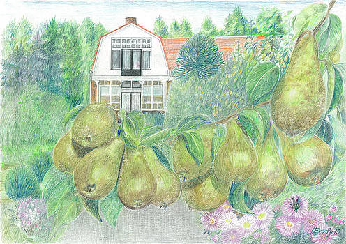 Delicious pears  by Eve-Ly Villberg