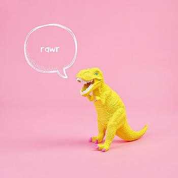 Dinosaur Rawr by