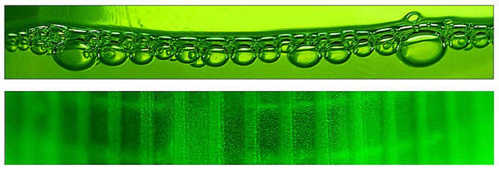 Do the Dew by Brian Duram