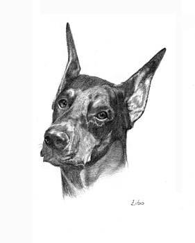 Doberman Pinscher by Lou Ortiz
