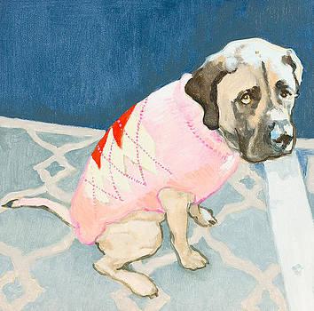 Dog Sweater by Debbie Beukema