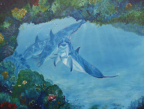 Dolphins Looking In by Randall Brewer
