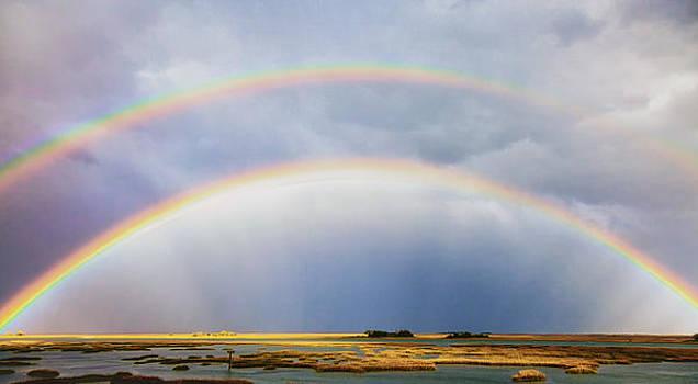 Rainbow Bridge by Jo Ann Tomaselli