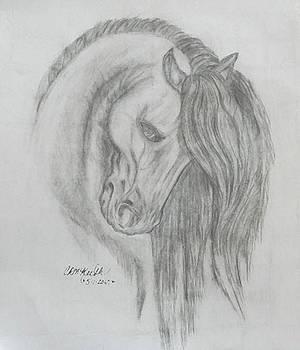 Dreams by Cheryl McKeeth