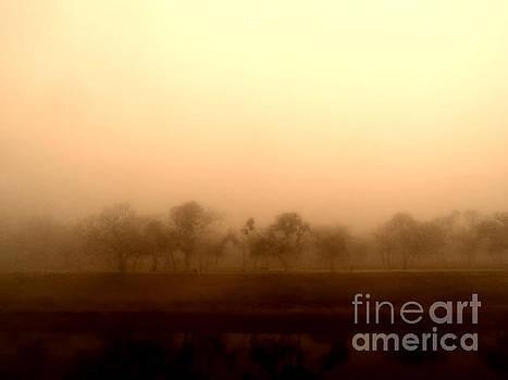 Dreamy Spring Fog by Eddie Lee