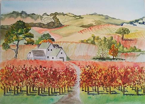 Driving Through Paso Robles by Terry Godinez