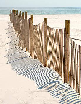 Dune Fence on Beach by Cheryl Casey