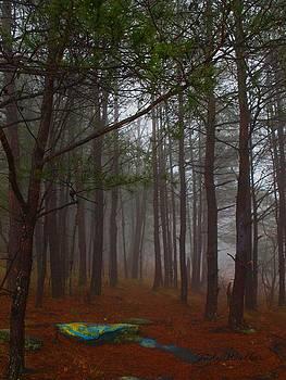 Eerie Fog by Judy  Waller
