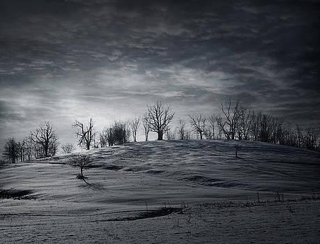 Elsewhere by Akos Kozari